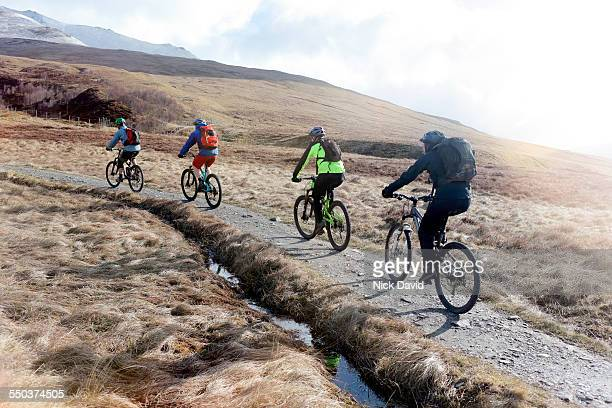 mountain bikers - four people stock pictures, royalty-free photos & images
