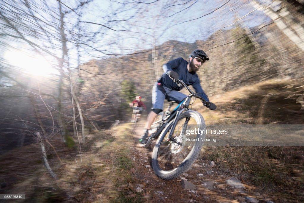Mountain bikers riding downhill in alpine landscape, Trentino, Italy : Stock Photo