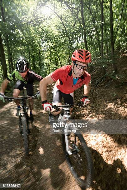 'Mountain bikers riding on track through forest, Bavaria, Germany'
