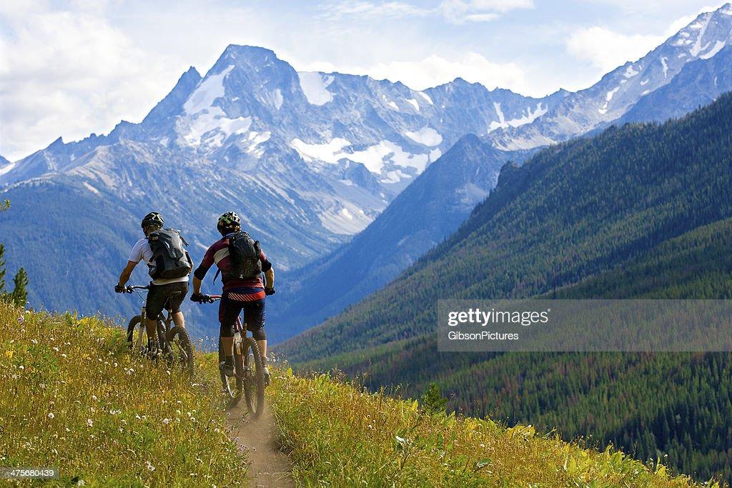 Mountain Biking British Columbia : Stock Photo