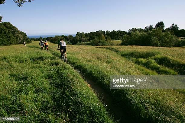Andar de Bicicleta de montanha da Califórnia