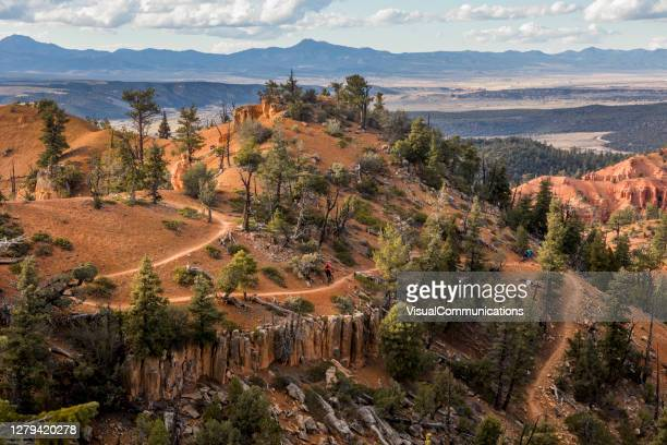 mountain biking in red canyon. - national forest stock pictures, royalty-free photos & images