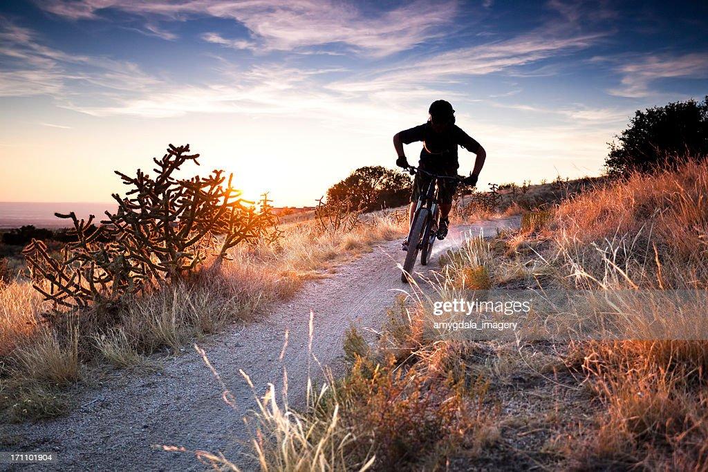 mountain biking landscape : Stock Photo
