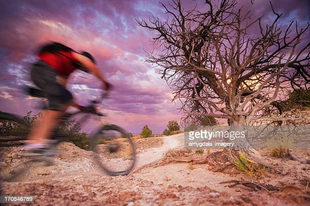 mountain biking motion - western juniper tree stock pictures, royalty-free photos & images