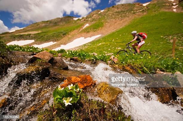 mountain biking - san juan mountains stock photos and pictures