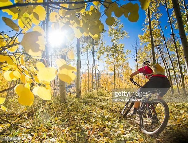 mountain Mountainbiken