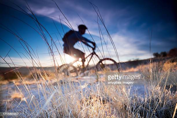 mountain biking - sonoran desert stock pictures, royalty-free photos & images