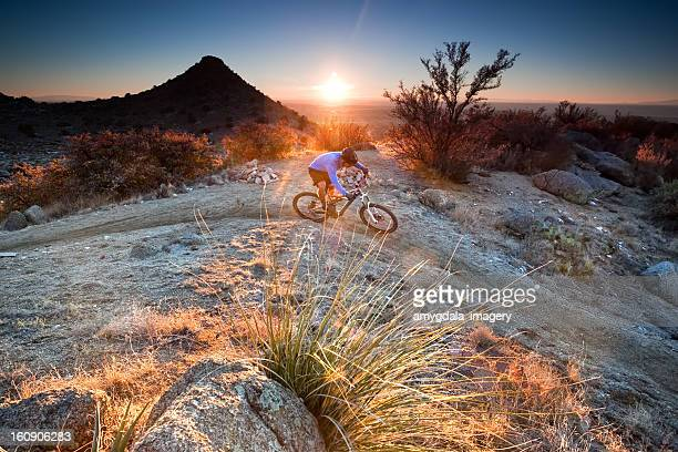 mountain biking sunset landscape - sonoran desert stock pictures, royalty-free photos & images