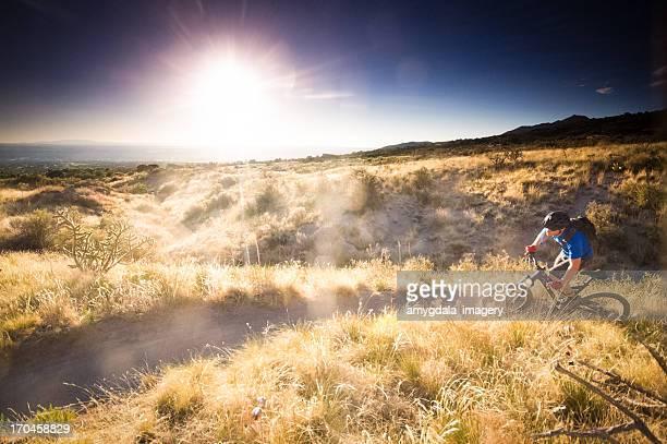 mountain biking sunshine! - sonoran desert stock pictures, royalty-free photos & images