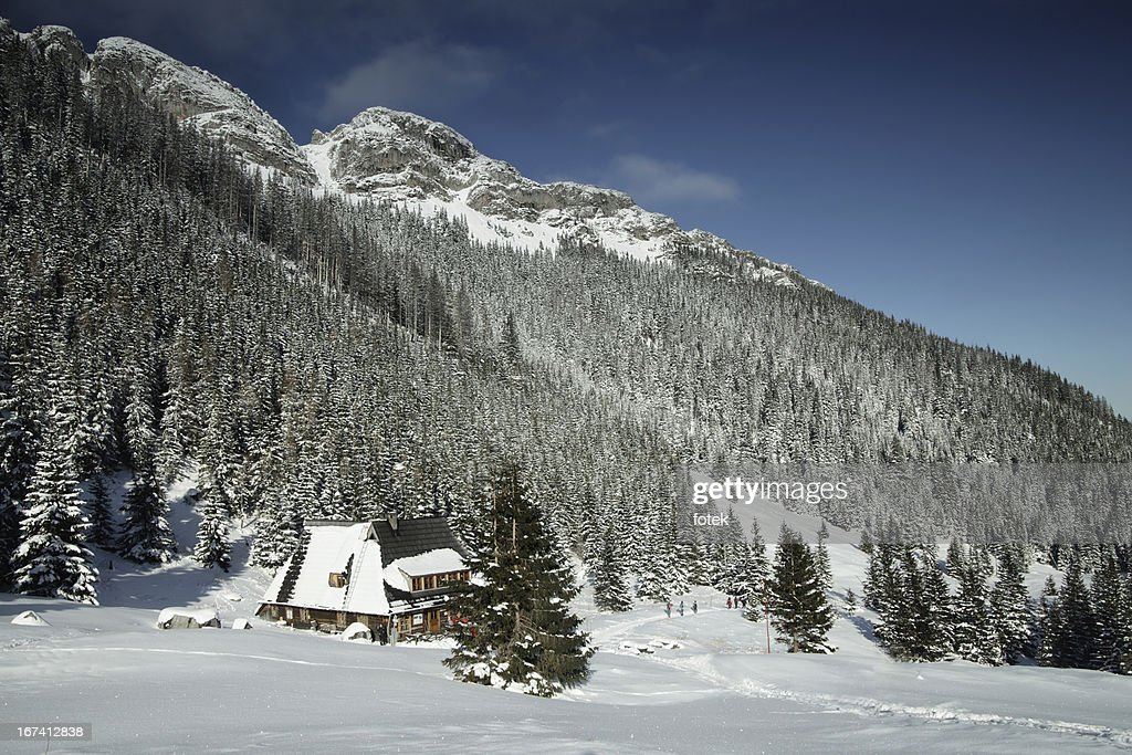 Mountain chalet : Stock Photo