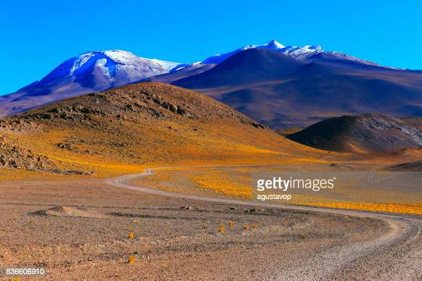 Mountain dirt Road pass to Chilean Andes altiplano at sunrise and volcano, Idyllic Atacama Desert, snowcapped Volcanic steppe puna landscape panorama – Antofagasta region, Chilean Andes, Chile, Bolívia and Argentina border