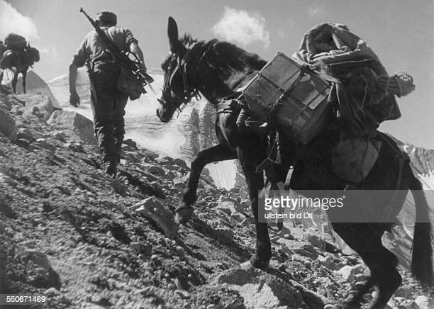 Mountain Division of the German Wehrmacht mountain infantry at Caucasus on the way over the Chotju Tau Pass