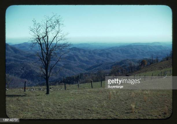 Mountain farm along Skyline Drive Virginia 1940