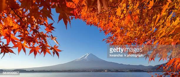 Mountain fuji with red leaves at lake Kawaguchiko