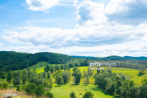mountain, hills and valleys - sylvania ohio stock pictures, royalty-free photos & images