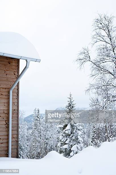 Mountain hut near forest in winter