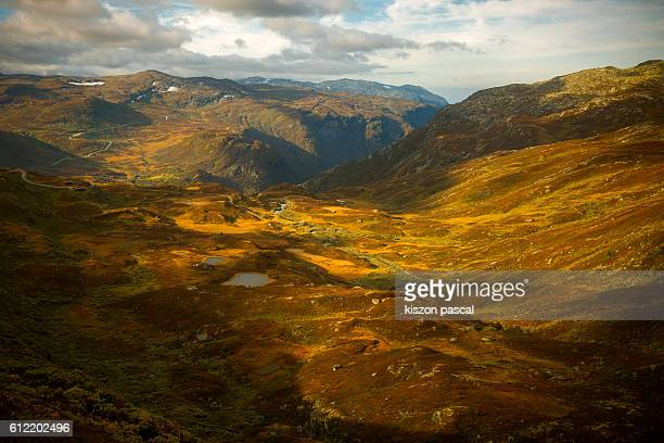 Mountain in autumn in Norway  , Europe