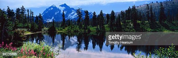 mountain, lake and trees - timothy hearsum stock-fotos und bilder