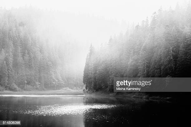 mountain lake - fog stock pictures, royalty-free photos & images