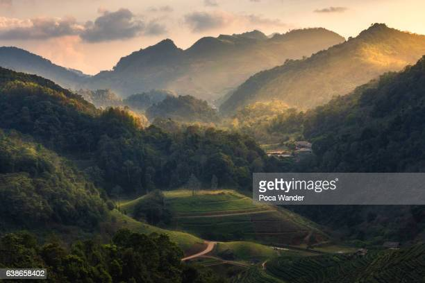 mountain landscape at dusk - valley stock pictures, royalty-free photos & images