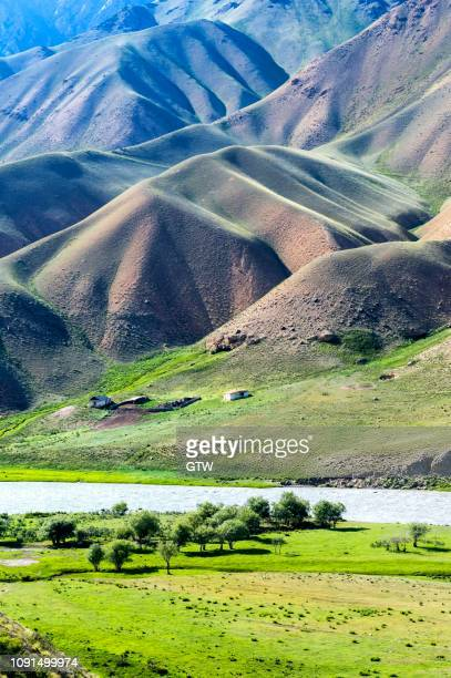 mountain landscape at naryn river, naryn gorge, naryn region, kyrgyzstan - kyrgyzstan stock pictures, royalty-free photos & images