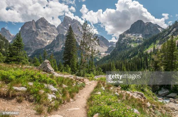mountain landscape, grand teton national park, wyoming, usa - grand teton national park stock pictures, royalty-free photos & images