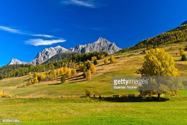 Mountain landscape in autumn, Tarasp, Engadin, Grisons, Switzerland