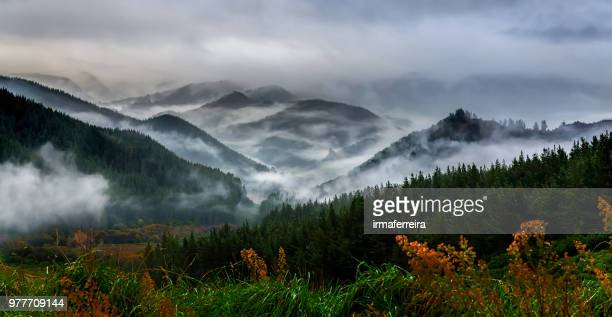 Mountain landscape in the rain, Motueka, South Island, New Zealand