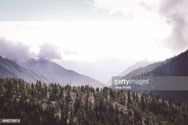 mountain landscape - big bear lake stock pictures, royalty-free photos & images