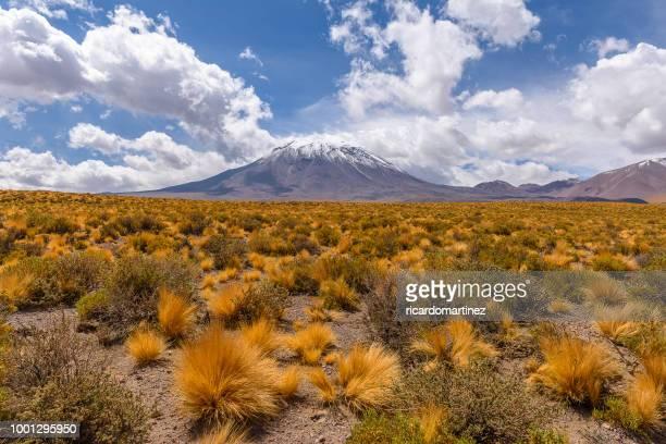 mountain landscape, socaire, el loa, antofagasta, chile - antofagasta region stock photos and pictures
