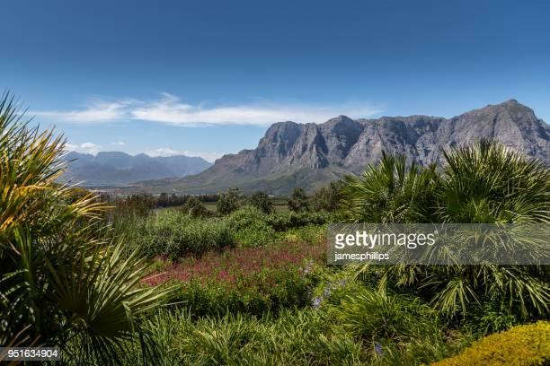 Mountain landscape, Stellenbosch, Western Cape, South Africa