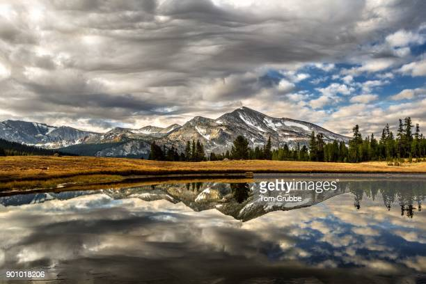 mountain morning - tom grubbe stock pictures, royalty-free photos & images