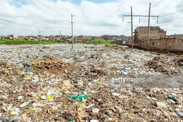 mountain of rubbish and plastic bags, in the dandora landfill in nairobi, with marabu birds. high pollution and serious damage to the ecosystem. - crash site stock pictures, royalty-free photos & images