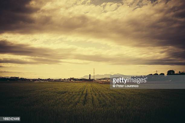 mountain over the fields - peter lourenco stock pictures, royalty-free photos & images