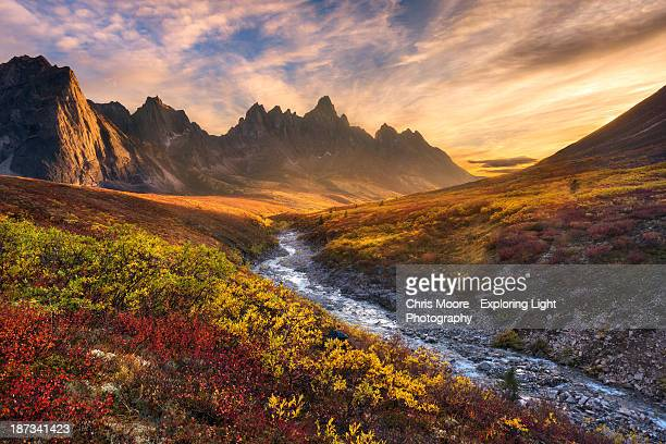 mountain paradise - tundra stock pictures, royalty-free photos & images