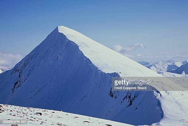 mountain peak covered in snow - heidi coppock beard stockfoto's en -beelden