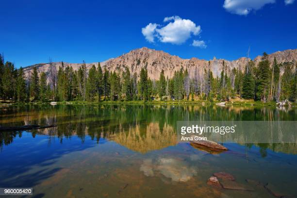 Mountain peak reflected in Born Lakes in White Cloud Wilderness, central Idaho in summer