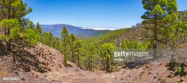 """Gama de la montaña Cumbre Nueva / Cumbre Vieja """"Ruta de los Volcanes"""" - Parque Nacional Caldera de Taburiente en Canarias isla de La Palma en la provincia de Santa Cruz de Tenerife - España"""