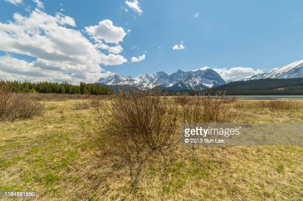mountain range seen from lower kananaskis lake - kananaskis country stock pictures, royalty-free photos & images