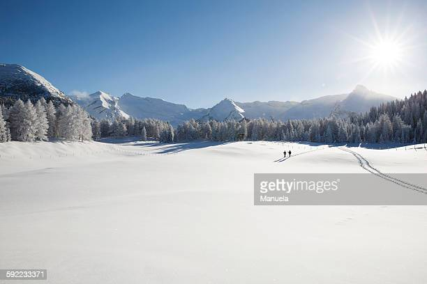 Mountain range, trees and senior couple far away on snowy landscape, Sattelbergalm, Tyrol, Austria