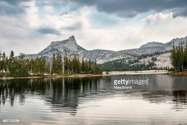 Mountain reflected in a lake, Cathedral Peak, Lower Cathedral Lake, Sierra Nevada, Yosemite National Park, Cathedral Range, California, USA