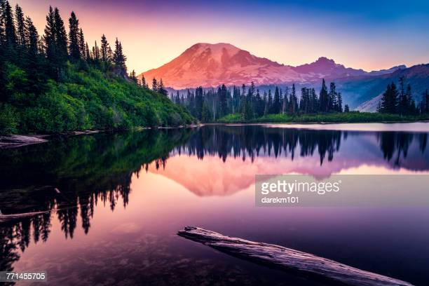 mountain reflection in bench lake, mt rainier national park, washington, america, usa - washington state stock pictures, royalty-free photos & images