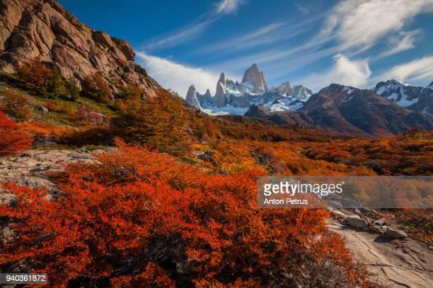 mountain river and mount fitz roy. patagonia, argentina - patagonische anden stock-fotos und bilder