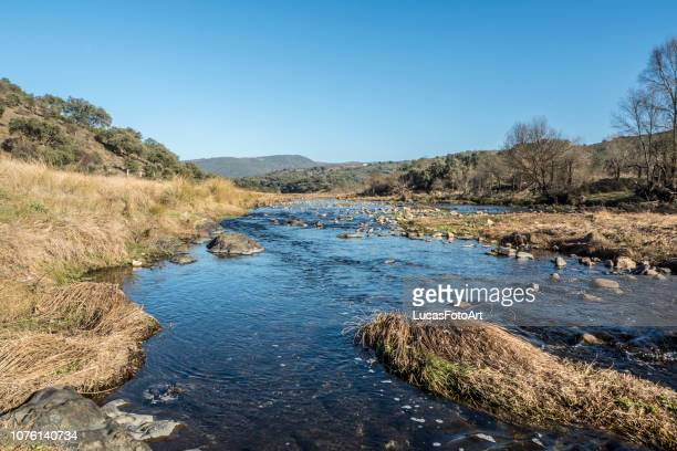 mountain river bed - salamanca imagens e fotografias de stock