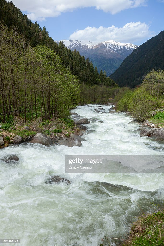 Mountain river in Northern Turkey : Stock Photo