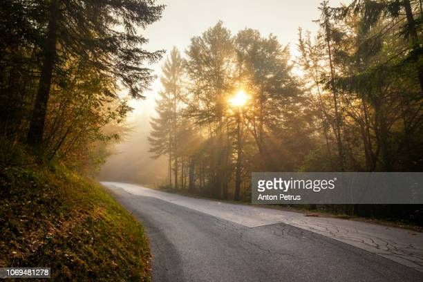 mountain road at sunrise in the fog - 十一月 ストックフォトと画像