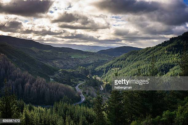 mountain road in hawkes bay - ネイピア ストックフォトと画像