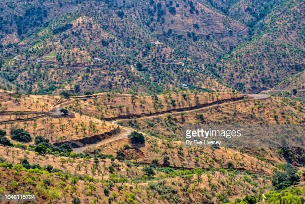 mountain road - paraje natural torcal de antequera fotografías e imágenes de stock