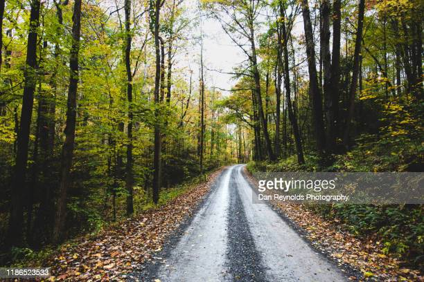 mountain road - appalachia stock pictures, royalty-free photos & images