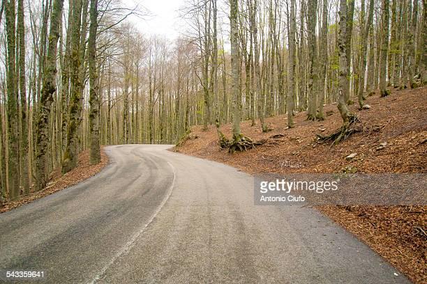 mountain road - parco nazionale d'abruzzo foto e immagini stock